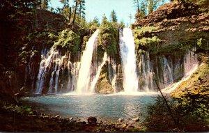 California Burney Falls In McArthur-Burney Falls State Park