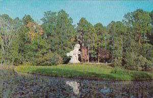 South Carlina Myrtle Beach Brookgreen Gardens