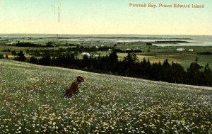 Canada - Prince Edward Island.  Pownall Bay
