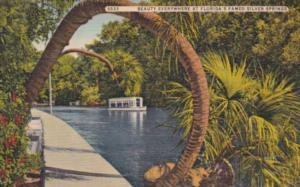 Florida Silver Springs Horseshoe Palm & Glass Bottom Boat