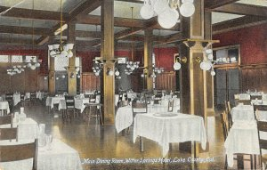 WITTER SPRINGS HOTEL Main Dining Room Lake County, CA 1909 Vintage Postcard