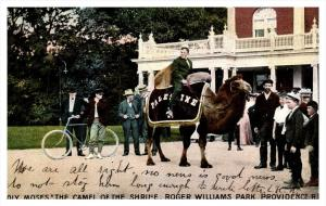 17114   RI Providence   Palestine Shriners, on Camel  Roger Williams Park