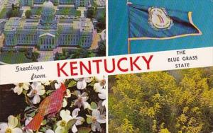 Greetings From Kentucky The Blue Grass State 1962