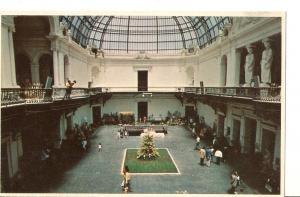 Postal 024156 : Lord Cochrane Museo Bellas Artes Santiago