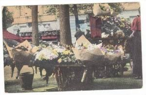 Flower Stand, Sunny Italy, 00-10s