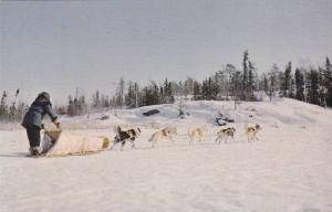 Dog Team Heading Home , YELLOWKNIFE , N.W.T. , 40-60s
