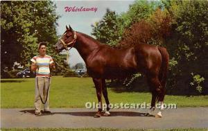 Whirlaway, Kentucky Derby Winner Lexington, Kentucky, KY, USA Tape on back