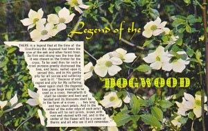Legend Of The Dogwood Canadian Pacific Dogwood