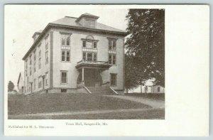Sangerville Maine~Town Hall~Neighboring Houses~HL Densmore~1905 Postcard