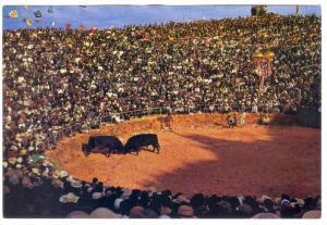 Farmers watch two bulls fight , Japan , 50-70s