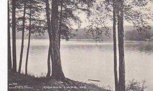New York Oquaga Lake Albertype