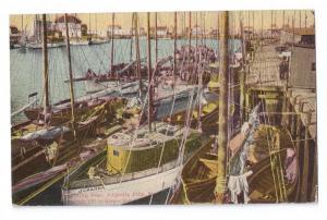 Yachting Pier Atlantic City NJ  Herman Becher 1911