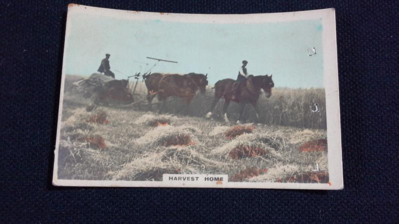 Cavanders Ltd Cigarette Card No 47 Camera Studies Harvest Home