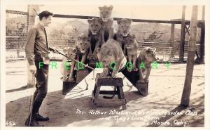 1940 El Monte Real Photo PC: Circus Lion Trainer Arthur West With Class of 7
