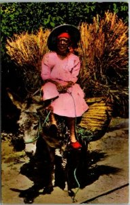 Port-Au-Prince, HAITI West Indies Postcard Woman on Donkey / Street Scene c1950s