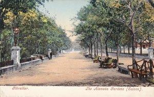 Gibraltar The Alameda Gardens sk4474
