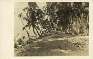 samoa, PAGO PAGO, Roadway with Palm Trees (1910s) RPPC