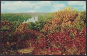 Michigan Water Wonderland Postcard BIN