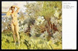 140507 Anders ZORN Naked Woman Bathing Nude Female Art VINTAGE Sweden pc c.1910