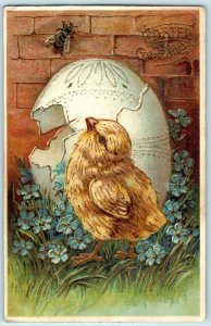 C. 1910 Adorable Chick Insect Fly Bee Egg Easter Postcard P66