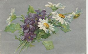 Violet & Daisy Flowers , 1900-10s