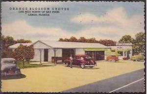 FL Largo Orange Blossom Groves