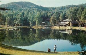Brevard North Carolina~Music Center~Transylvania Camp~Beach Pier~1950s Postcard