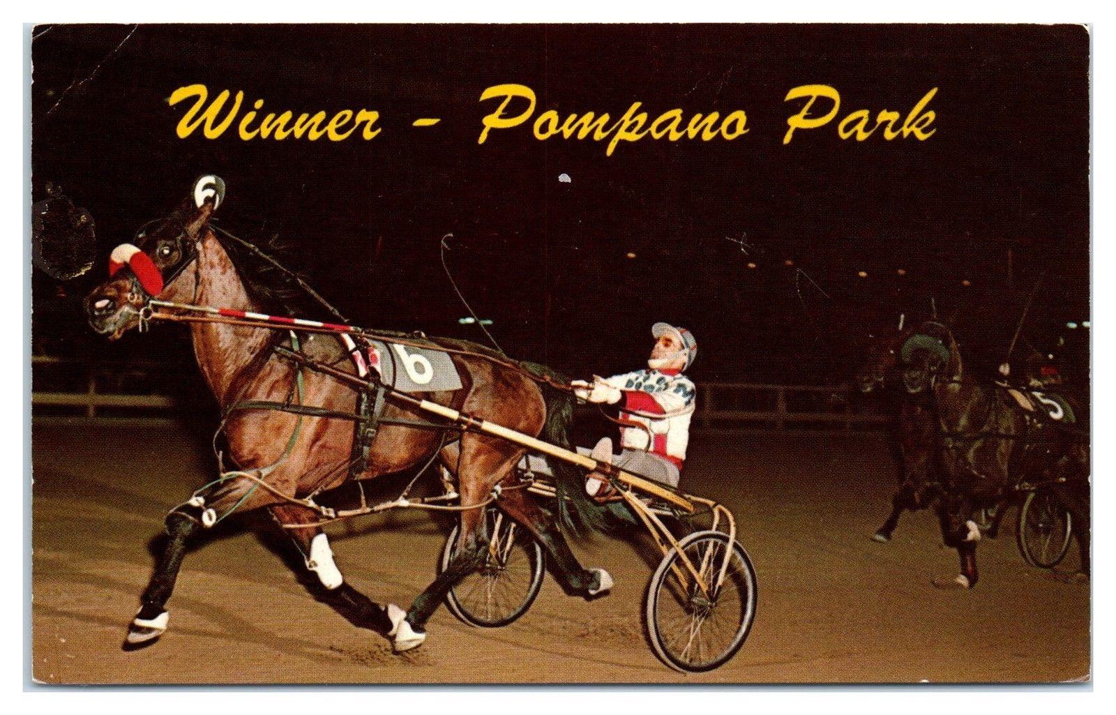 1969 Winner Pompano Beach, FL Night Harness Racing Sulky Postcard