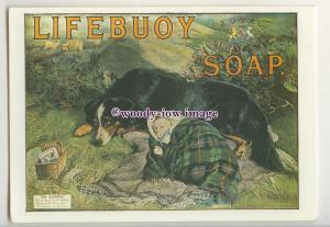ad1088 - Lifebuoy Soap, Abandoned Baby & Dog in Hills - Modern Advert Postcard