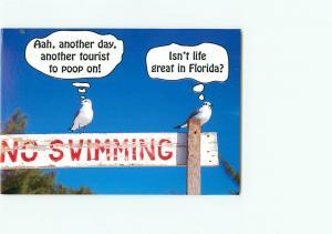 Vintage Postcard Greetings Seagull No Swimming Sign   Florida  # 3091