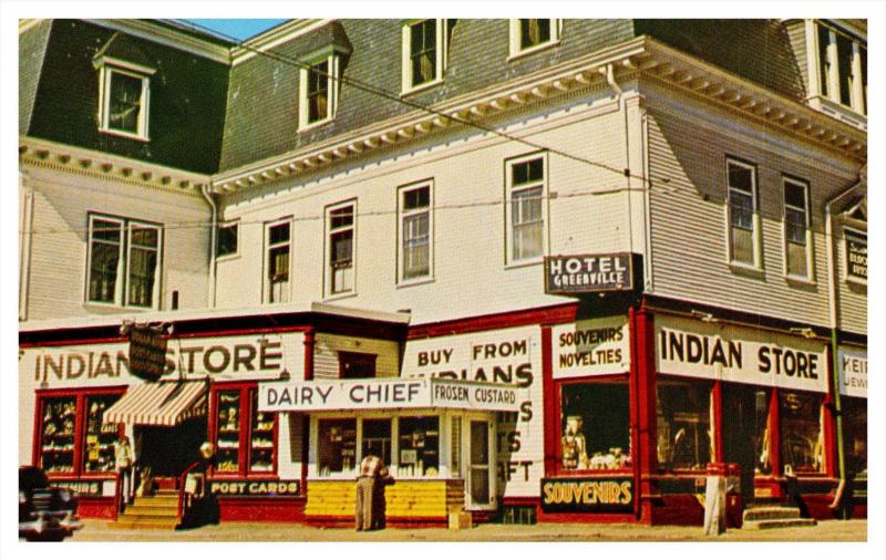 3179 Me Greenville The Indian Store Hippostcard