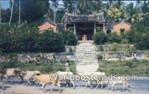 Snake Temple Penang Malaya, Malaysia Unused
