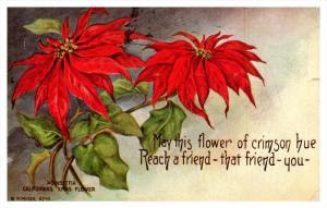 8467   Flowers  Poinsettia , poem