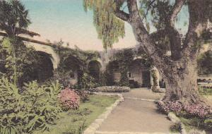 Front Garden Old Pepper Tree South Corridor Old Mission San Juan Capistrano C...