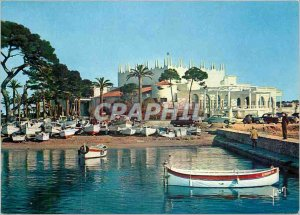 Modern Postcard The French Riviera miracle of nature Cannes AM Palm Beach