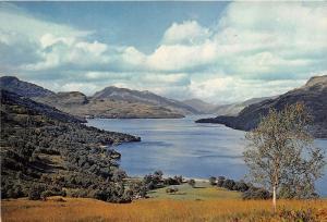 B87297 loch lomond dunbartonshire  scotland