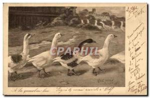 Old Postcard A single file Geese tail