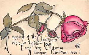 California Christmas Rose~In Memory of When We Together Froze~1912 Postcard