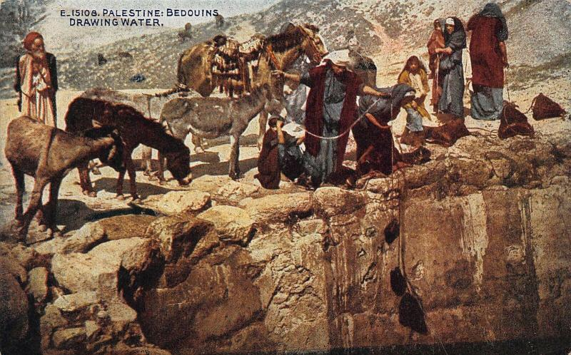 Palestine Bedouins Drawing Water Donkeys Animals Postcard