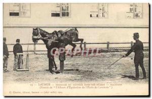 Old Postcard Saumur Horse Equestrian Dressage jumper in Balotage pillars