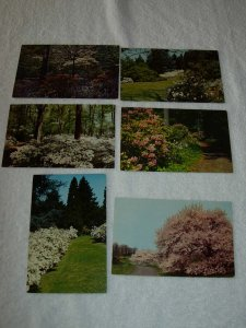Winterthut DE - Lot Of 6 Great Vintage Postcards - x0519