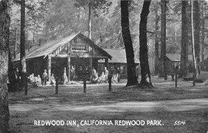 REDWOOD INN California Redwood Park Big Basin, Santa Cruz County c1910s Postcard