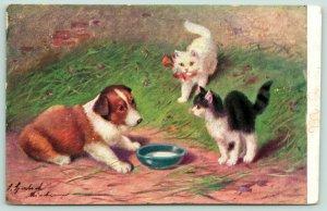 Sperlich Kitty Cats~Kittens Approach Milk Dish~Puppy Dog~Artist Signed~1907