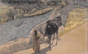 Camel Traveling Merchant Jerusalem, Palestine Unused