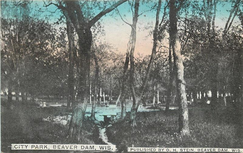 Beaver Dam Wisconsin~Draw From Fountain @ City Park~1910 Stein~To Anna Pagel