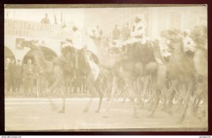 dc1158 - ITALY MILITARY 1911-12 Italo-Turkish War Camel Cavalry. Libya. RPPC