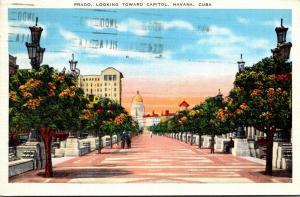 Cuba Havana Prado Looking Toward Capitol 1938