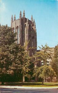 New Haven Connecticut~Yale University~Peobody Museum~1950s Postcard