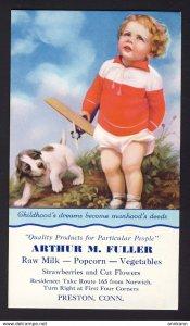 Preston, CONN. USA - Arthur M. Fuller - baby boy airplane puppy dog BLOTTER