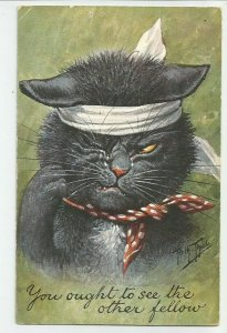 Old POSTCARD ~ Cat ~ You Ought to See the Other Fellow ~ Artist Signed ~ Thiele